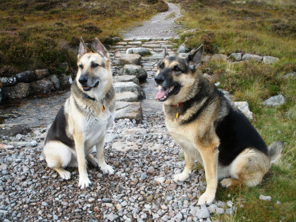 Jerry Lee and Holly in Glencoe, Scotland