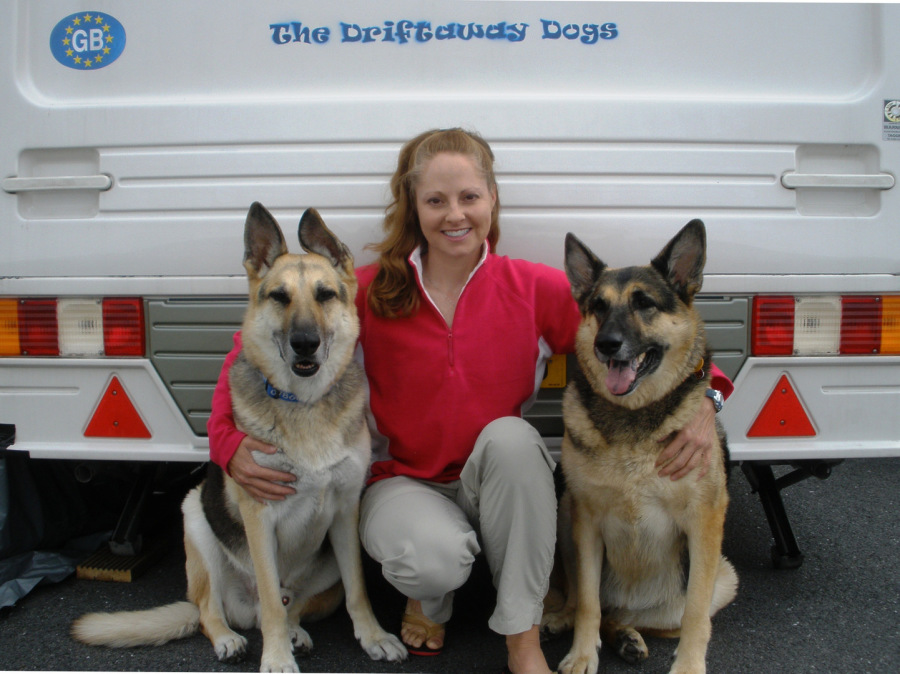 The Driftaway Dogs: Jerry Lee, Gina, and Holly