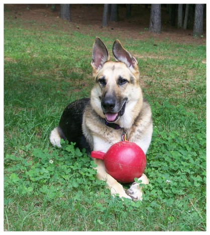 Jerry Lee with Holly's red Jolly Ball