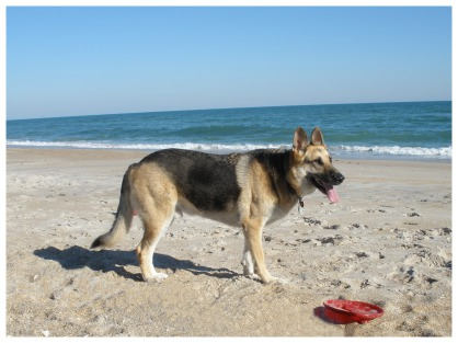 Jerry at North Topsail Beach, NC