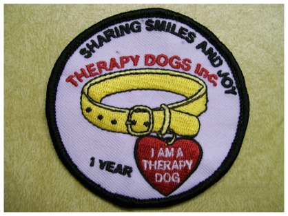 Jerry's therapy dog badge